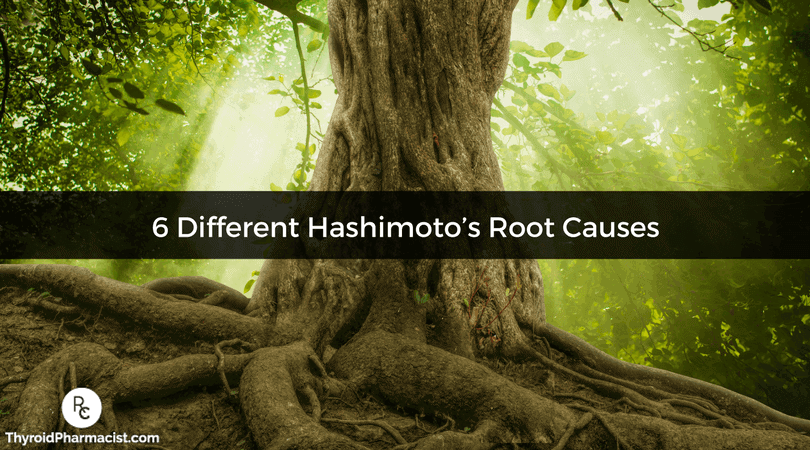 6 Different Hashimoto's Root Causes