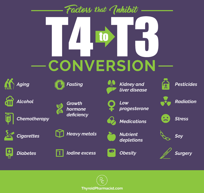 Factors That Inhibit T4 to T3 Conversion
