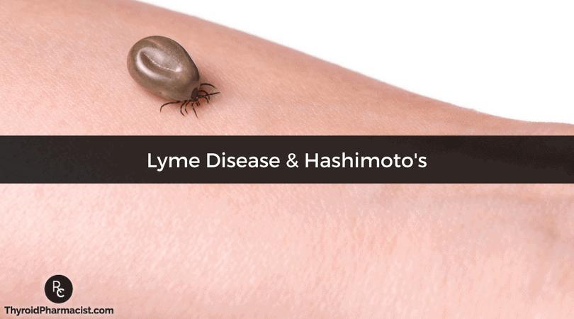 Lyme and Hashimoto's