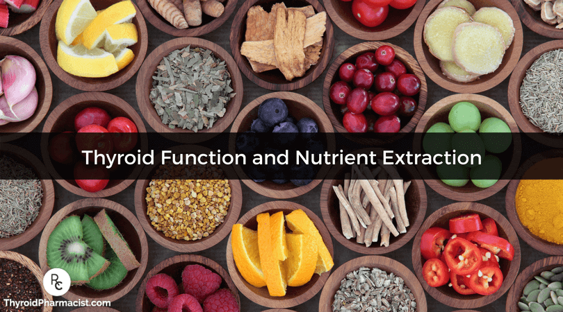 Thyroid Function and Nutrient Extraction