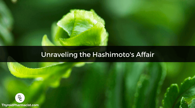 Unraveling the Hashimoto's Affair