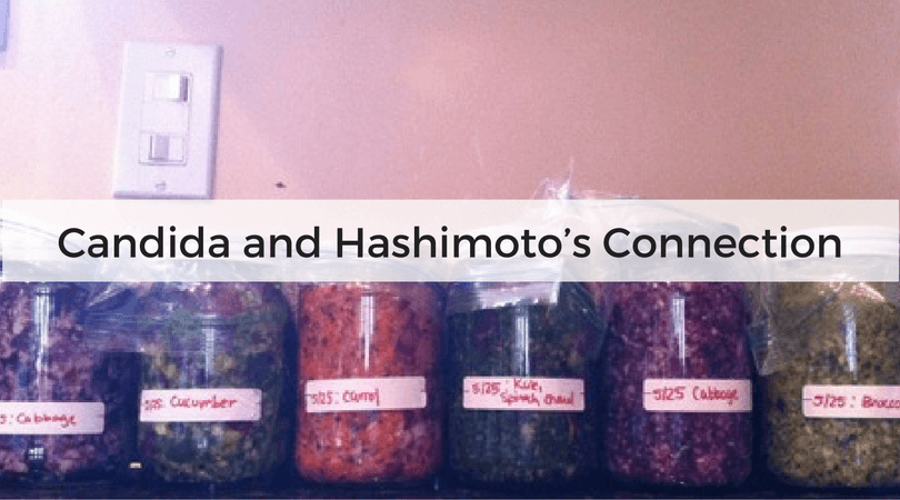 Candida and Hashimoto's Connection