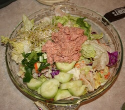 No Can Vegan Tuna Salad