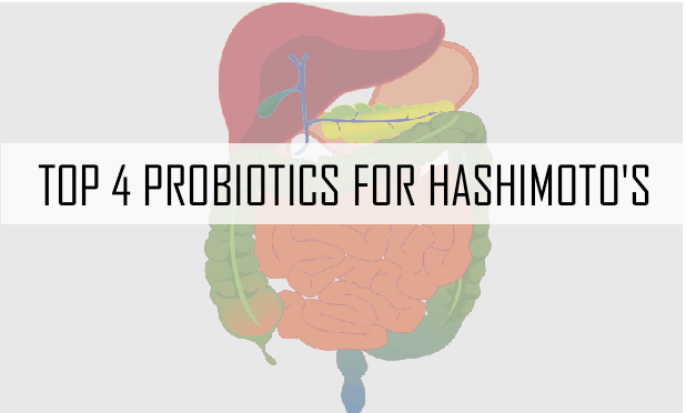 The Four Best Probiotics For Hashimoto's