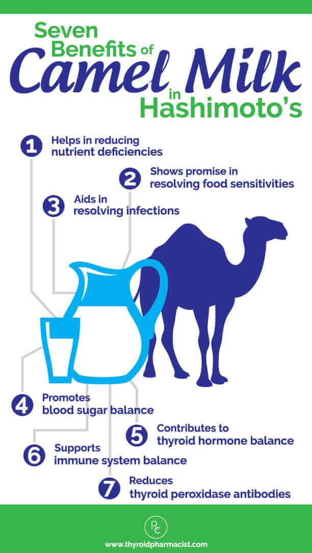 Hashimoto's and Camel Milk Benefits (1)