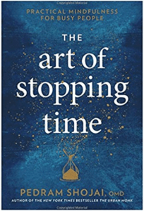 The Art o fStopping Time