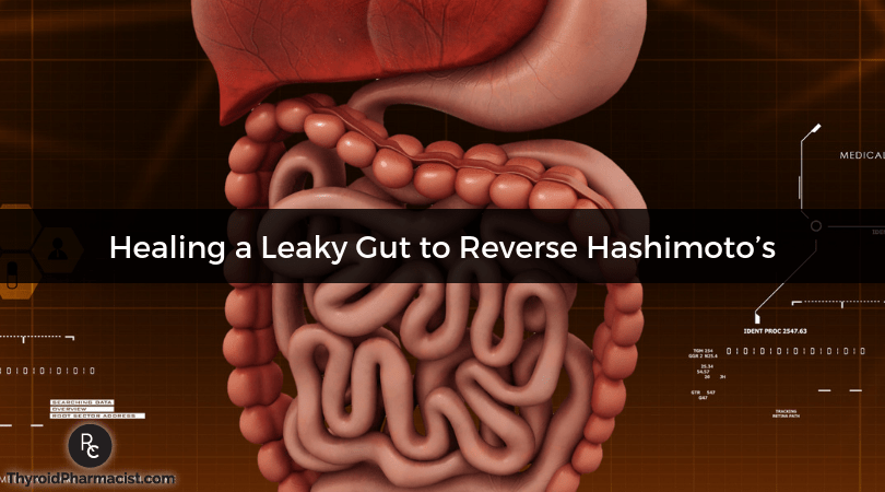 How Healing a Leaky Gut Can Help Hashimoto's