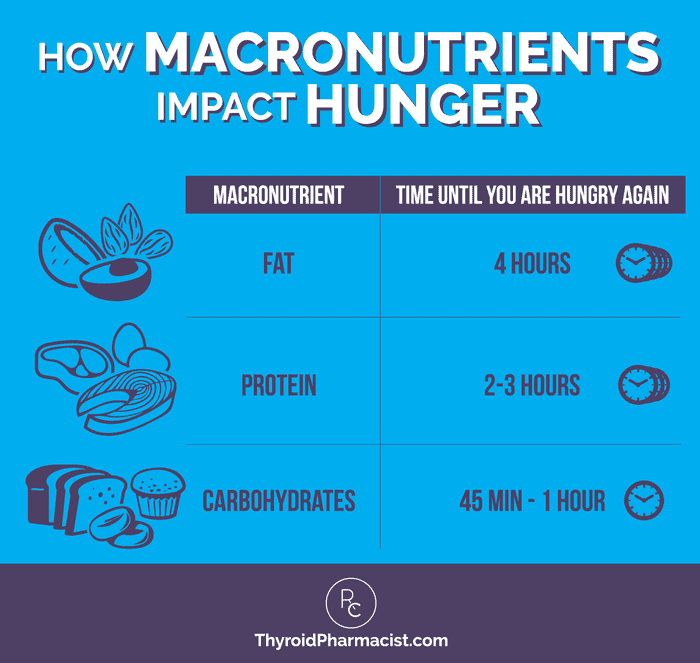 How Macronutrients Impact Hunger