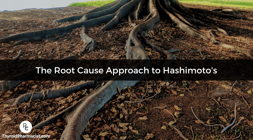 Why Hashimoto's Requires a Root Cause Approach
