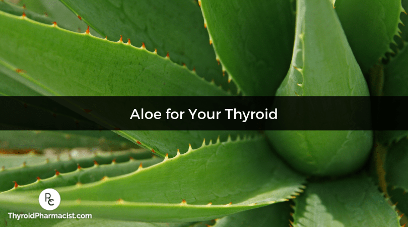 How Aloe Vera Supports Thyroid Health