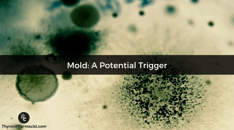 Mold: A Potential Trigger of Hashimoto's