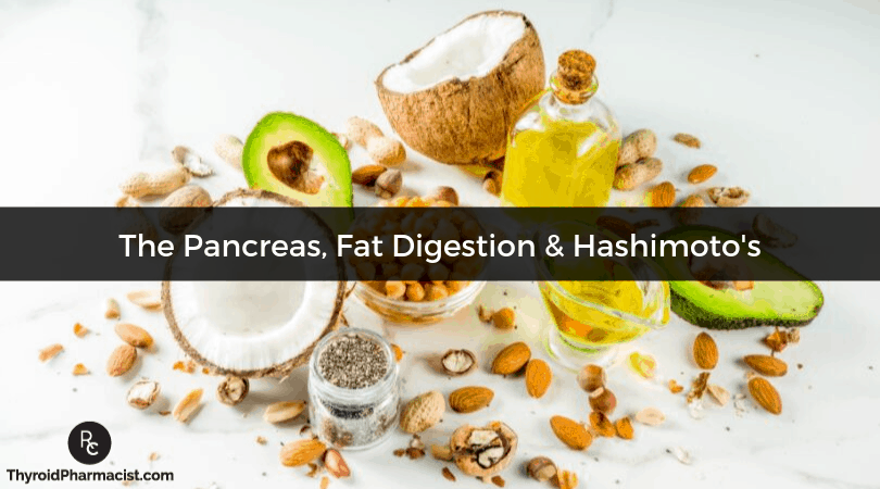 Pancreatic Elastase, Fat Digestion and Hashimoto's