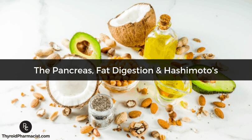 Pancreatic Elastase, Fat Digestion and Hashimoto's