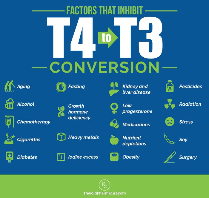 Factors that Inhibit T4 to T3 Conversion
