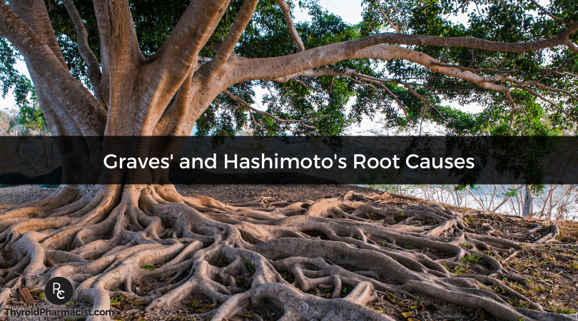 Do Hashimoto's and Graves' Disease Share the Same Root Causes?