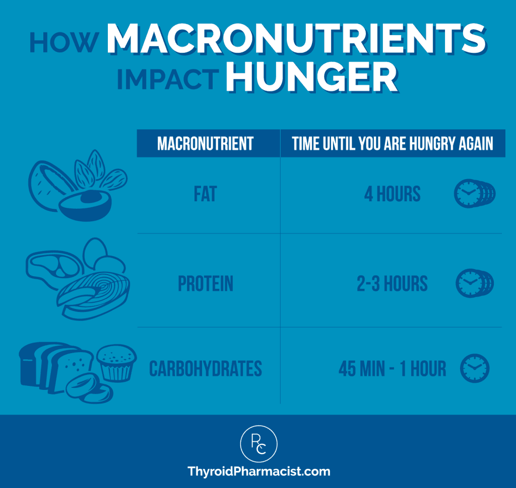How Macronutrients Impact Hunger Infographic