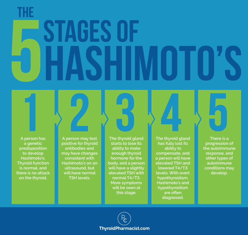 The 5 Stages of Hashimoto's Infographic