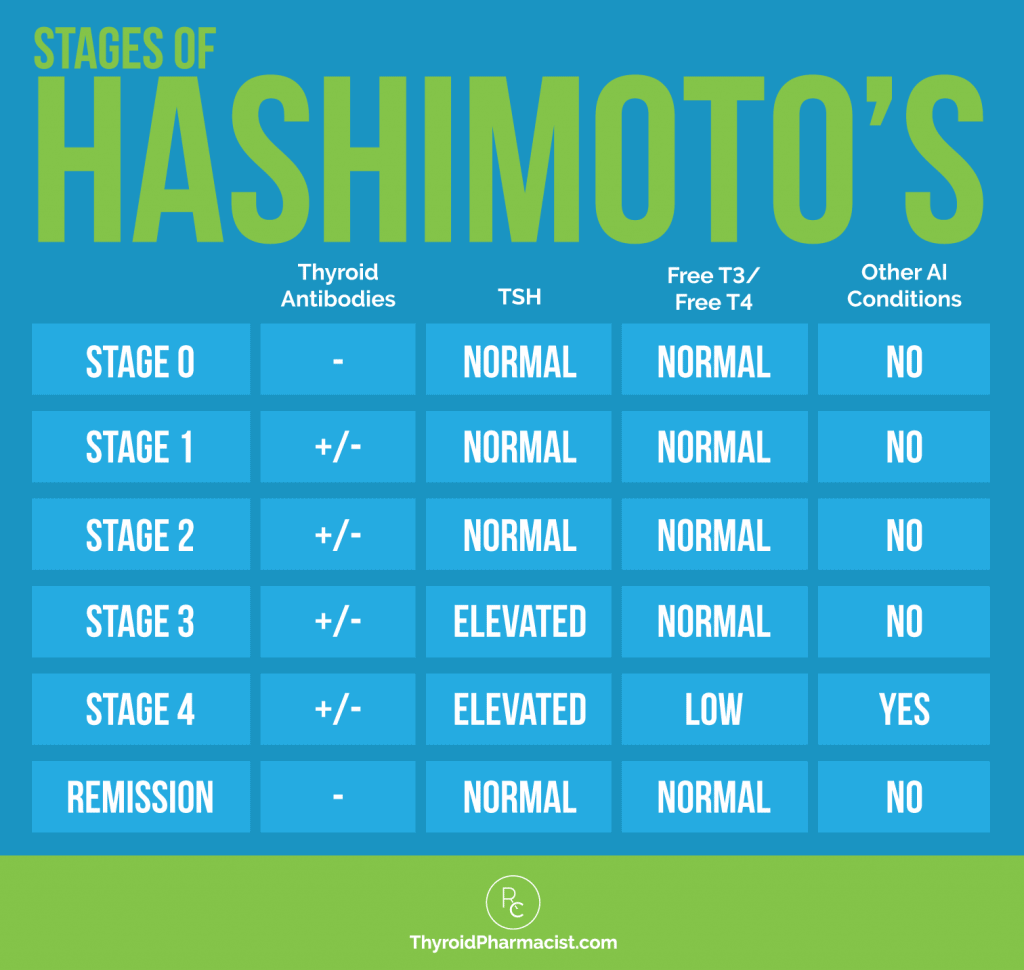 Stages of Hashimoto's Infographic