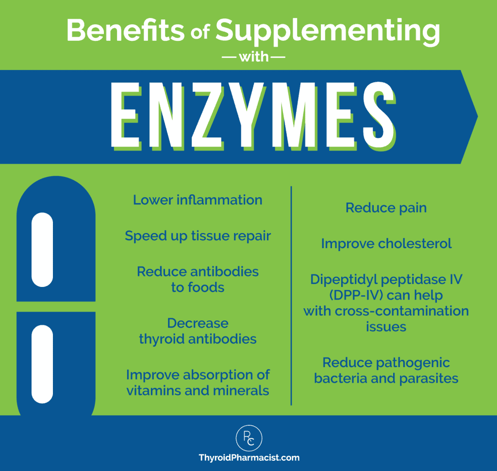 Benefits of Supplementing with Enzymes Infographic