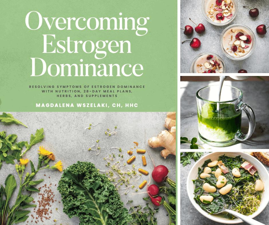 Overcoming Estrogen Dominance Book