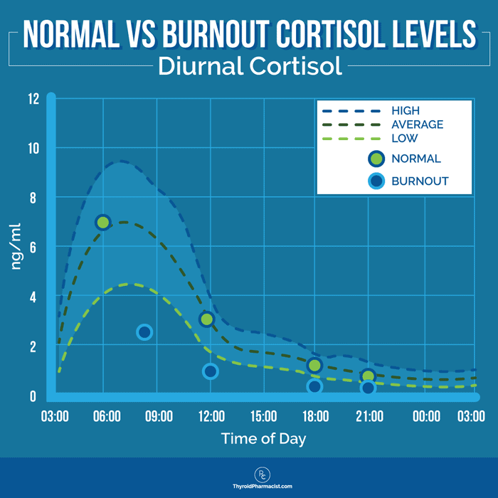 Normal vs. Burnout Cortisol Levels Infographic