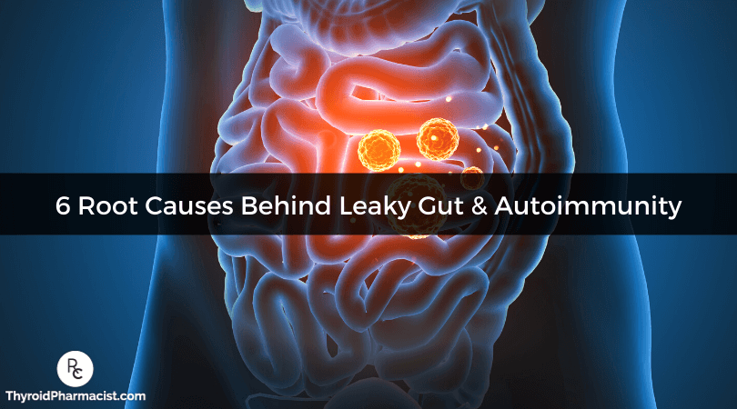 6 Root Causes Behind Leaky Gut and Autoimmunity
